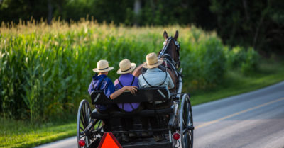 Amish hold pro-Trump parade in Ohio riding in horse driven wagons
