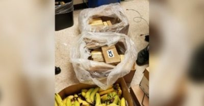 Kilos of cocaine found in banana boxes at three Safeway stores in Washington
