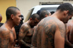 Over 600 MS-13 gang members arrested since Trump took office
