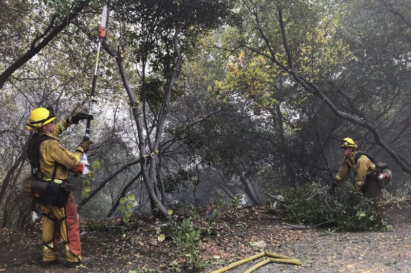 In this Wednesday, Oct. 9, 2019, image taken from video, CalFire firefighters cut down potential fuel for the Briceburg Fire off Highway 140, south of the Merced River in Mariposa County, Calif. The wildfire near Yosemite National Park started on Sunday. (Vikaas Shanker/The Merced Sun-Star via AP)