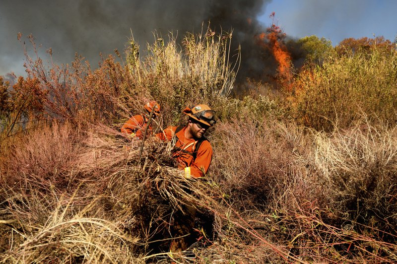 An inmate firefighter creates a fire break as the Maria Fire approaches in Santa Paula, Calif., on Friday, Nov. 1, 2019. According to Ventura County Fire Department, the blaze has scorched more than 8,000 acres and destroyed at least two structures. (AP Photo/Noah Berger)
