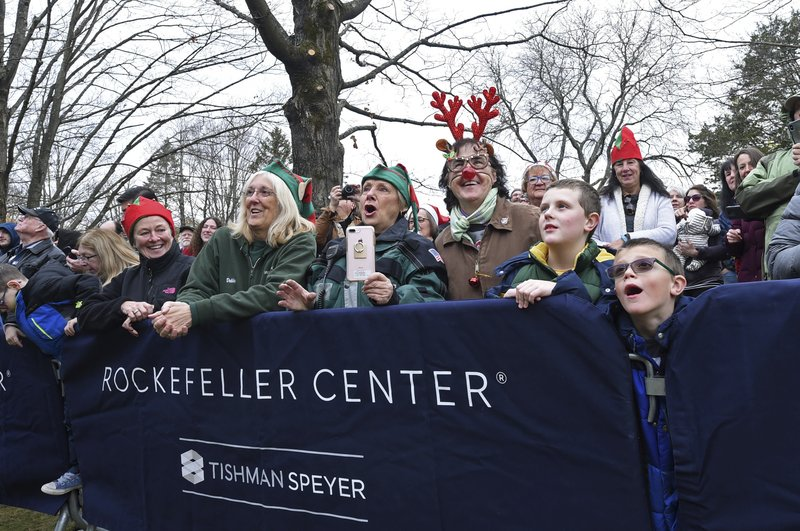 IMAGE DISTRIBUTED FOR TISHMAN SPEYER- Local residents watch as this year's Rockefeller Center Christmas tree, a 77-foot tall Norway Spruce, is cut, Thursday, Nov. 7, 2019, in Florida, NY. The tree will be brought into New York City by flatbed truck and erected at Rockefeller Center on Saturday, Nov. 9. The 87th Rockefeller Center Christmas Tree Lighting ceremony will take place on Wednesday, Dec. 4. (Diane Bondareff/AP Images for Tishman Speyer)