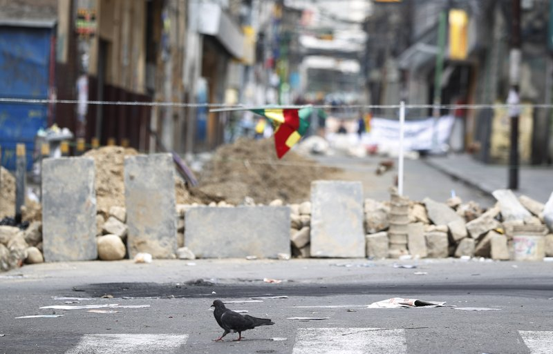 A dove walks past a barricade made by anti-government demonstrators, meters away from the presidential palace in La Paz, Bolivia, Sunday, Nov. 10, 2019. President Evo Morales is calling for new presidential elections and an overhaul of the electoral system Sunday after a preliminary report by the Organization of American States found irregularities in the Oct. 20 elections. (AP Photo/Juan Karita)