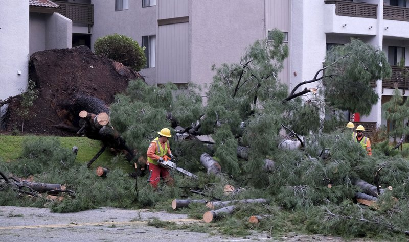 Workers remove a tree that fell across Burbank Blvd. at Canoga Ave. in Woodland Hills, Calif., following a night of steady rain, on Thursday, December 26, 2019. (Photo by Dean Musgrove, Los Angeles Daily News)/The Orange County Register via AP)