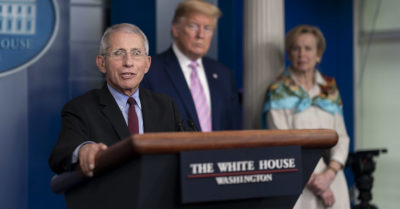 Dr. Fauci's testimony corrects Dems 'false narrative' as there was no confrontational relationship with the president