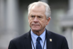 The Democrats and the 'useful idiots' of the Republican Party stole the election from President Trump, said Peter Navarro