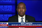Ben Carson: 'Race is being manipulated' to 'divide' Americans and 'create chaos'