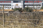 Customs and Border Protection cracks down on Chinese forced labor camp products