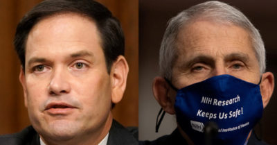 Sen. Rubio exposes Dr. Fauci: It is irresponsible to 'lie to the American people'