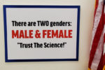 'There are two genders: male and female': Rep. Marjorie Greene responds to progressive onslaught in Congress
