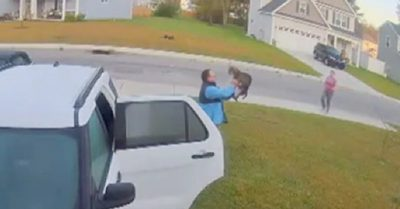 Watch: Man saves wife from rabid bobcat attack by grabbing and hurling it across lawn