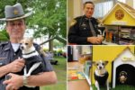 Chihuahua police dog dies on same day her owner  passes away, will be buried together