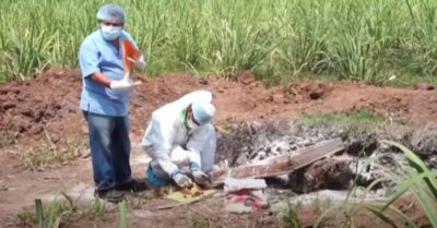 Dozens of women's bodies found in backyard of former police officer's home in El Salvador