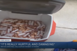 Virginia dad pours 80k pennies as his daughter's support payment into her lawn, she responds with kindness