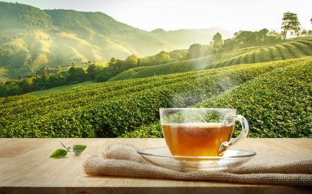 Deep connection between tea and spirituality