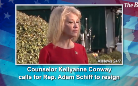 Counselor Kellyanne Conway calls for Rep. Adam Schiff to resign
