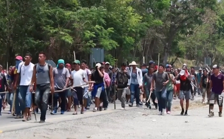Mexico detains hundreds of Central American migrants